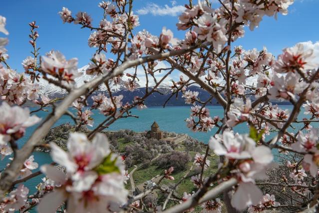 Kış mevsiminde kar altındaki Akdamar Adası, ilkbaharda Van Gölü'nün ve gökyüzünün eşsiz maviliği, yemyeşil doğası ve çiçek açan badem ağaçlarıyla ziyaretçilere görsel şölen sunuyor.