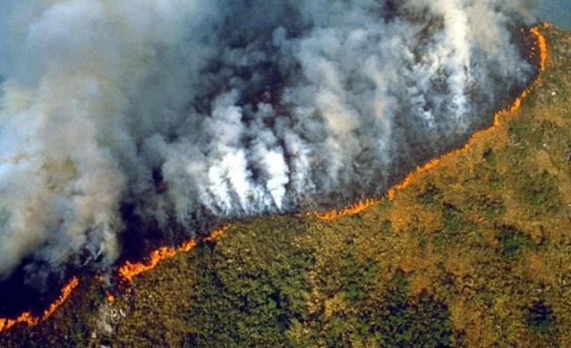 Dünyanın en geniş tropikal bölgesi olan ve dünya oksijeninin yüzde 20'sini karşılayan Amazonlar, yeterli önlem alınmaması ve gerekli müdahalelerin yapılmaması sebebiyle yanmaya devam ediyor.