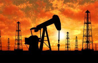 O ilimizde petrol üretilecek!