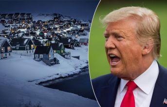 Grönland'den Trump'a soğuk cevap!