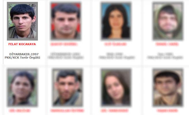 Gri kategorideki terörist öldürüldü