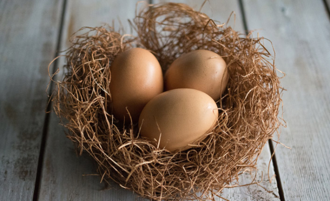 Yumurta fiyatları yarı yarıya düştü