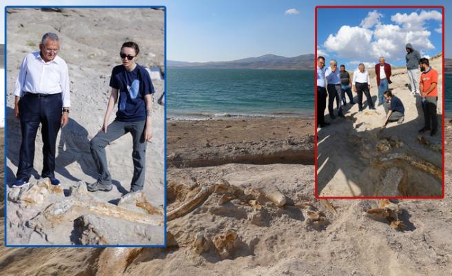 Kayseri'de 7,5 milyon yıllık keşif!