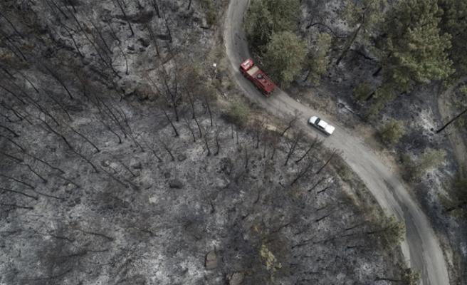 Muğla'daki orman yangınlarını PKK üstlendi