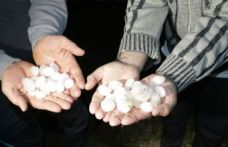 Yozgat'ta sel! Ekili alanlar hasara uğradı