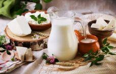 Türkiye'den Çin'e süt ürünleri de gidecek