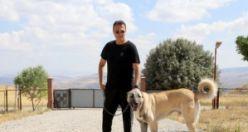 Fikret Orman tam bir Kangal köpeği hastası