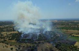 Balıkesir'de korkutan orman yangını