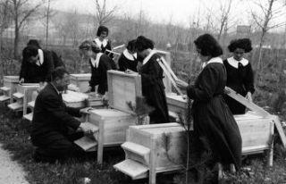 Aydınlanma yılları: Köy Enstitüleri