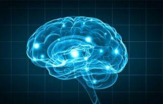 Dünyanın en kısa IQ testi