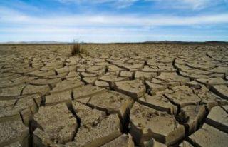 İklim değişikliğine karşı kullanılabilecek...