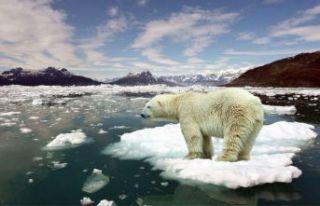İklim değişikliğine sert önlemler alınacak!
