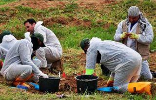 Irak'ta 12 toplu mezar ortaya çıktı!