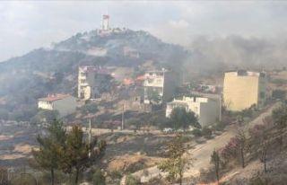 İzmir'de yangın! Evlere de sıçradı