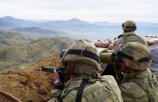 Mardin ve Bingöl'de operasyon: 4 terörist etkisiz