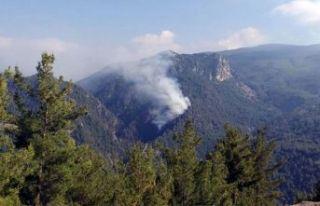 Amanos'ta korkutan orman yangını