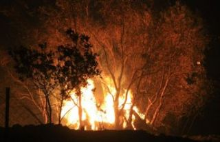 Muğla'da yangın... İki köy boşaltıldı