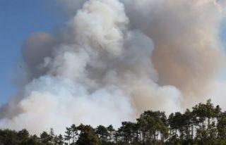 Bursa'daki yangınla ilgili 3 gözaltı