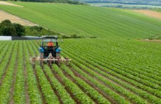 Çiftçilere bugün ödeme yapılacak