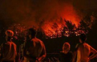 Orman yangınlarını terör örgütü PKK üstlendi!