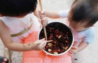Çin'de yemek artıkları için 'hamam böceği' yetiştiriliyor