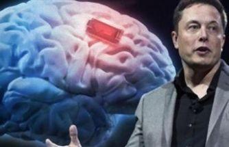 Elon Musk'tan çılgın proje!