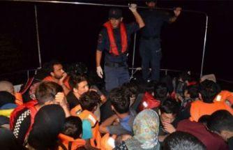 4 bine yakın düzensiz göçmen yakalandı