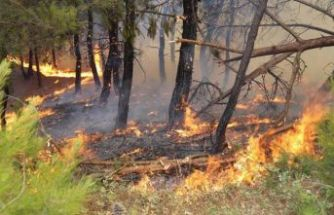 """Bakan'dan yangın açıklaması: """"Sabotaj olabilir"""""""