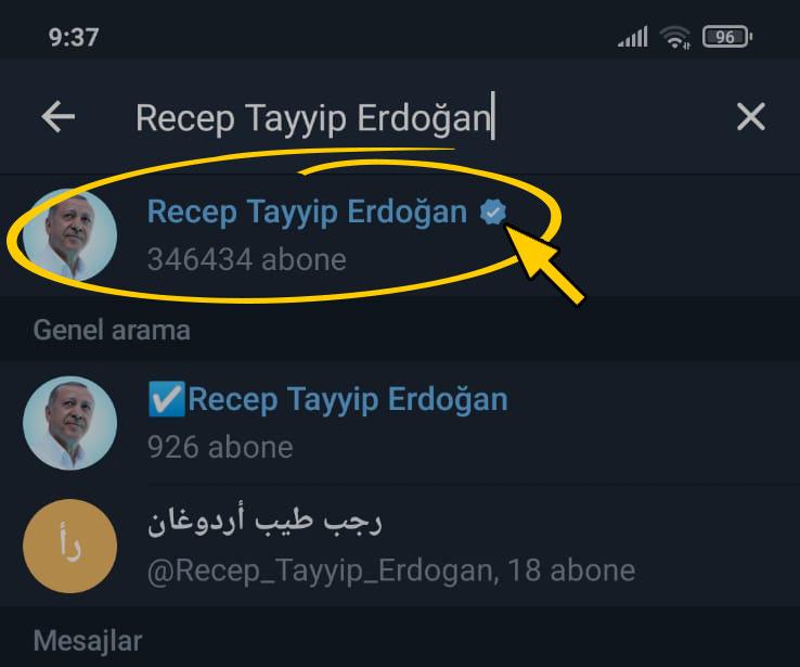 Erdoğan'ın Telegram hesabı